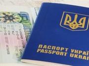 Получение визы: рабочие,  туристические,  шенген